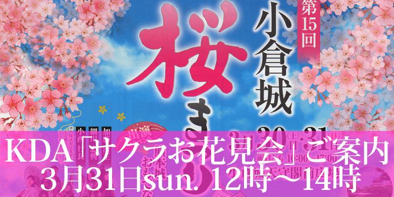 平成最後の 「KDAサクラお花見会」のご案内。たまにはお会いしましょうよ!